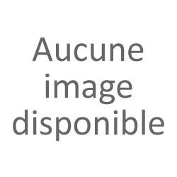 DOUBLE PACK BATTERIE POUR CAMERA QUANTUM X LITE 30 V